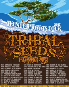 z-tribal-seeds-WRT-IG-800-x-1000
